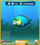 Blue Parrotfish