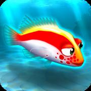 Fish rare hawkfish red