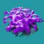 ORN Purple Heap of Seamoss
