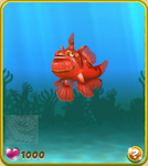 Red Clown Frogfish