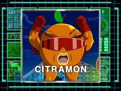 DigiAnalyserDS-Citramon