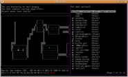 Nethack-options