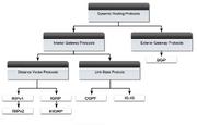 Dynamic routing protocols