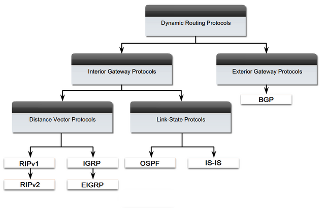 File:Dynamic routing protocols.png