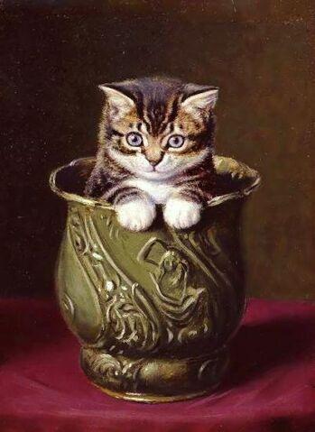 File:Decanter of endless kittens.jpg