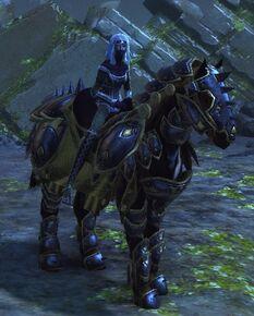 Medium Adventurer's Horse