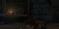 Curious Dwarf