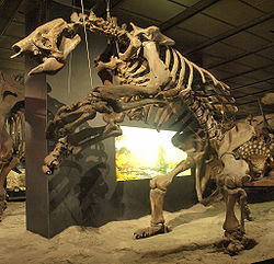 File:250px-WLA hmns Giant ground sloth 2.jpg
