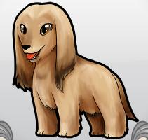 File:Afghanhound.png