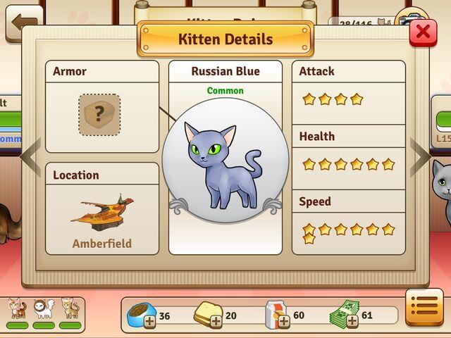 File:Russian Blue - Common.jpg