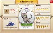 Korat profile
