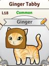 Ginger pro