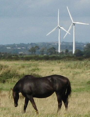 File:Wind-turbines-with-horse.jpg