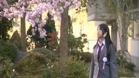 AKB48 Sakura no Hanabiratachi 2008 PV-1