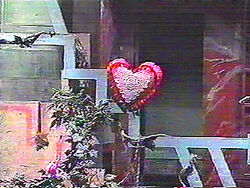 Heart-Shaped Pillow of Annie Taylor