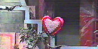 The Heart-Shaped Pillow of Annie Taylor