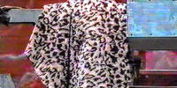 The Leopard Skin Cloak of Annie Oakley