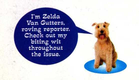 File:Zelda van gutters from april 1997 contents page.jpg