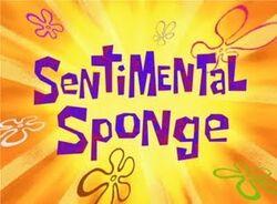 Sentimental Sponge