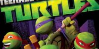 Teenage Mutant Ninja Turtles videography