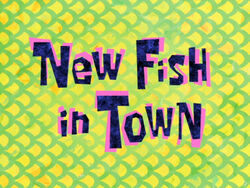 New Fish in Town
