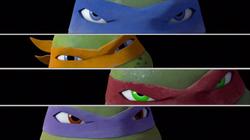 Turtles eyes