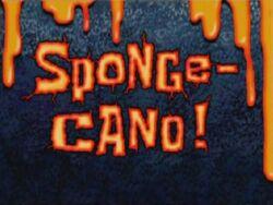Sponge Cano!