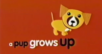 Nick Jr. A Pup Grows Up Title Card