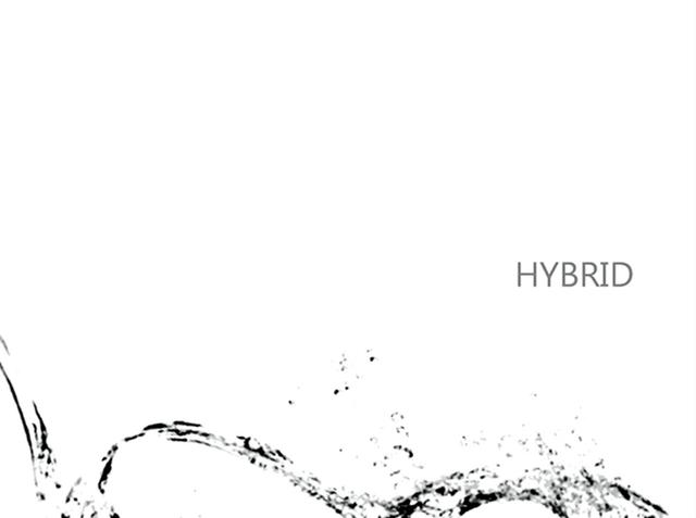 File:HYBRID niki.png