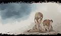 Himawari torasuke campanella.23652084 p1