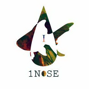 File:1n0se icon.png