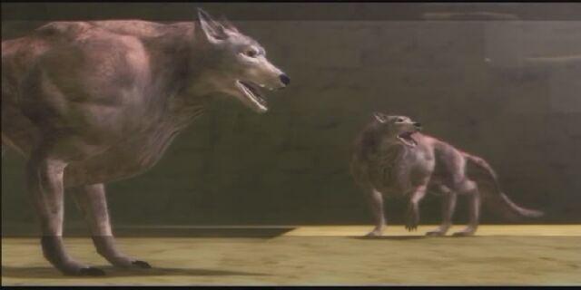 File:30-wolves.jpg