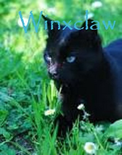 Winxclaw