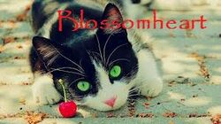 Blossomheart