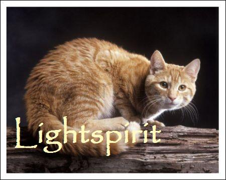File:Lightspirit.jpg