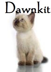 Dawnkit