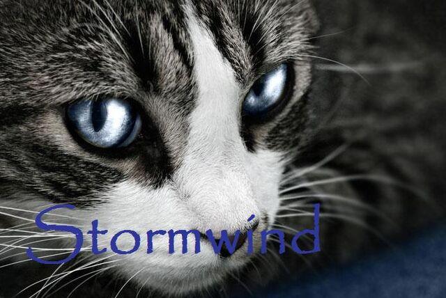 File:Stormwind.jpg