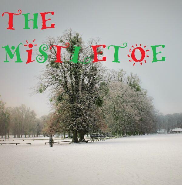 Winter-Mistletoe
