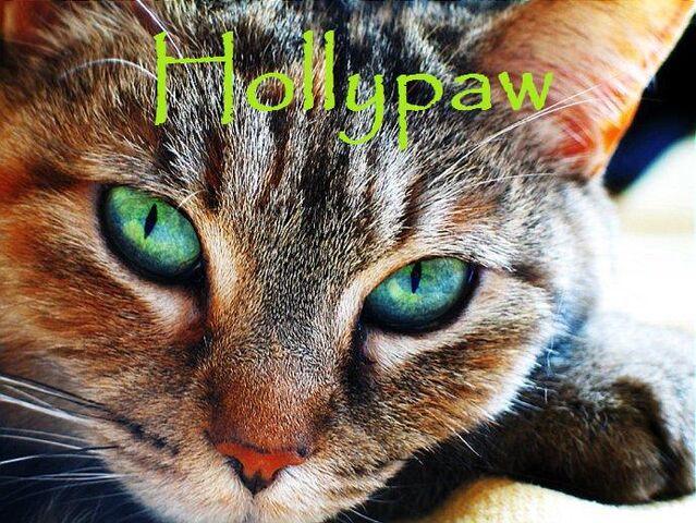 File:Hollypaw.jpg