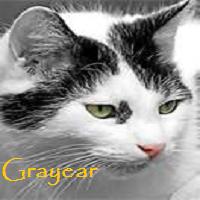 Grayear