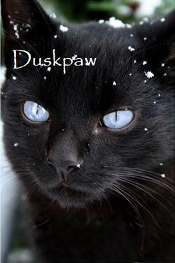 Duskpaw