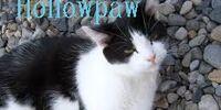 Hollowpaw
