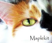Maplekit