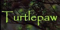 Turtledapple