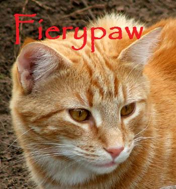 File:Fierypaw.jpg