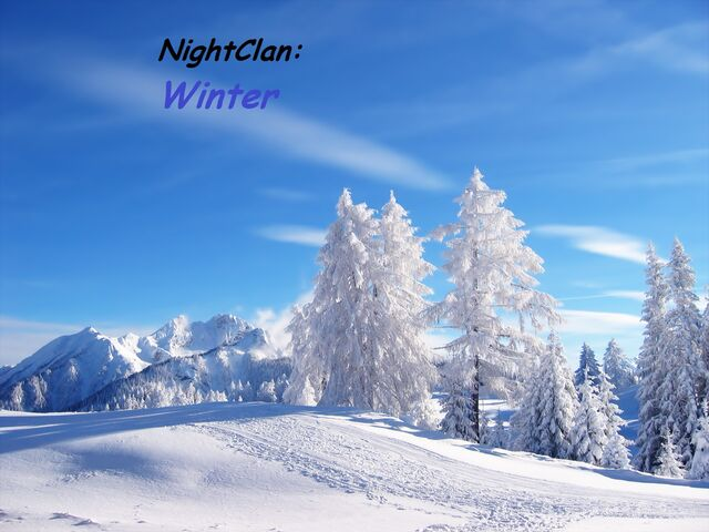File:WinterYAY.jpg