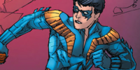 Nightwing Suit V1 (Prime Earth)