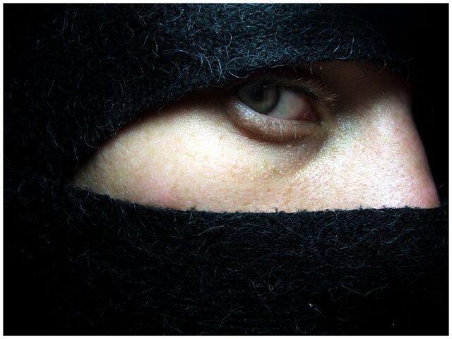 File:Ninja eyes-3053.jpg