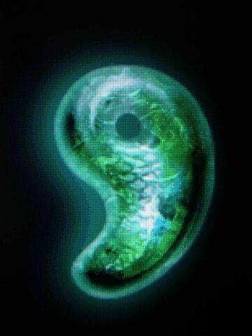 File:The dragon's eye.jpg