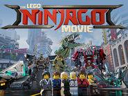 TLNM Ninja Poster 2